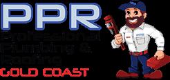 Professional Plumbing & Roofing Logo